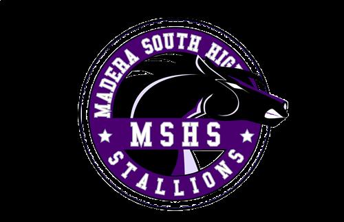 MSHS Logo
