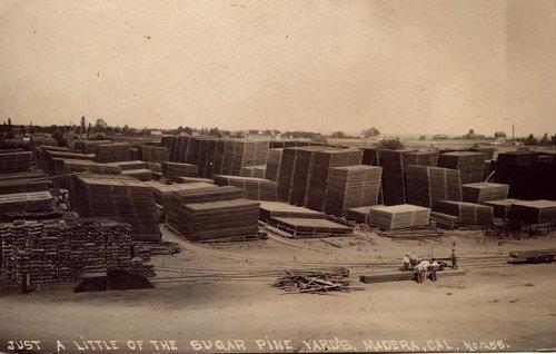 Sugar Pine Lumber Yard