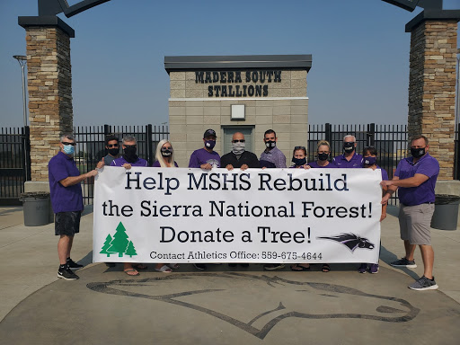 MSHS Helps Rebuild the Sierra National Forest